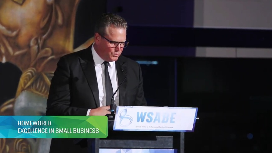 WSABE 2019 – Excellence Small Business – Youth Insearch